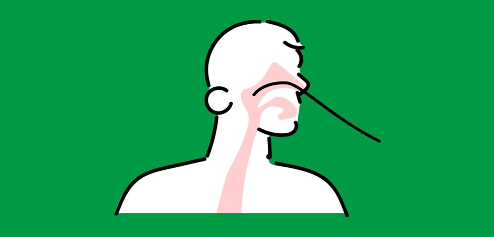 「経鼻内視鏡」による検査ができます